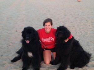 Peggy shared some CK love with her Newfoundland cousins, Birkie and Henry, at  the beach in Lake Michigan!